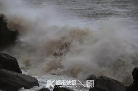 """台风""""利奇马""""的最新消息,"""