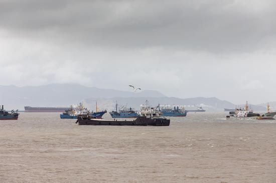 图为:浙江台州沿海客渡运航线已全面停航。台州海事局供图