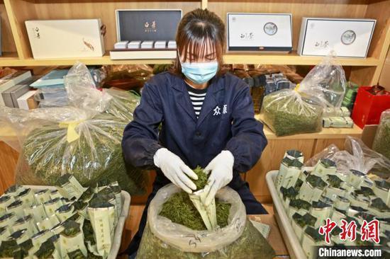 安吉中国白茶城干茶交易市场商铺正在装袋茶叶 潘学康 摄