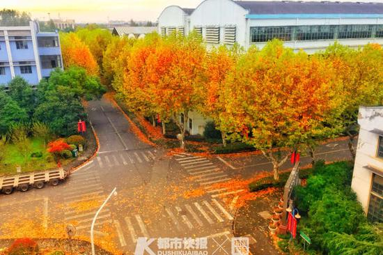 老杭州人的记忆 钢铁动脉上最后一家杭字头企业搬离
