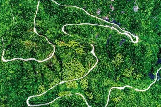 浙江部分公路入选全国十大最美名单 在你家门口吗