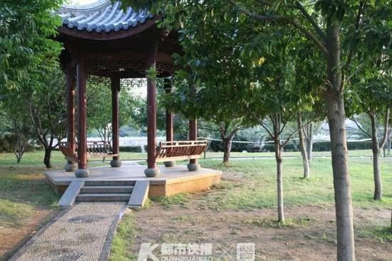 浙1公园命案死者身份成谜 11年后发现其涉及1起诉讼案