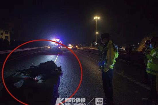 浙女司机高速撞到1匹马 原来是在剧组拍戏间突然跑了