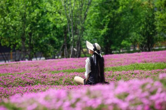 杭州藏着一片花海秘境 教你分分钟拍出美丽大片