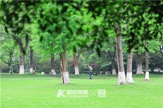 钱江新城的公园里,市民走在草坪间。记者夏阳摄
