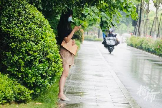 杭州地区仍有阵雨或雷雨 又热又多雨好似入梅节奏