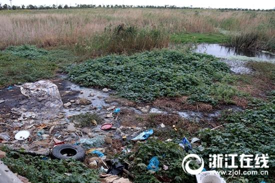 污水溢流形成污水塘(季建荣 摄)