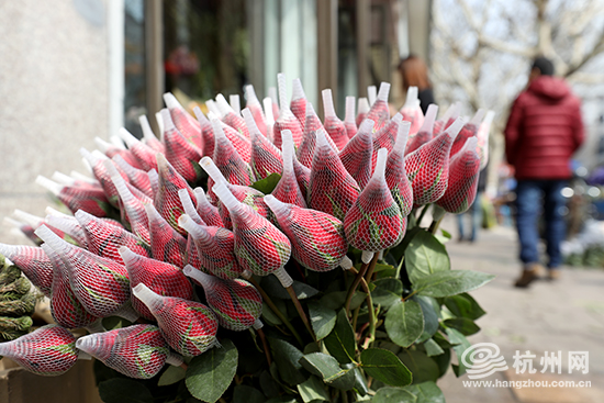 各式的玫瑰、康乃馨已经摆在显眼位置。