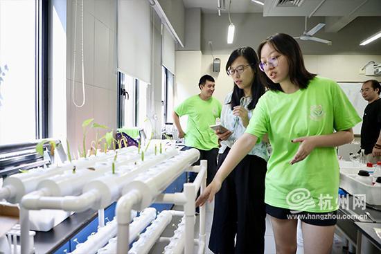 成员参观水培架和水培植物幼苗。