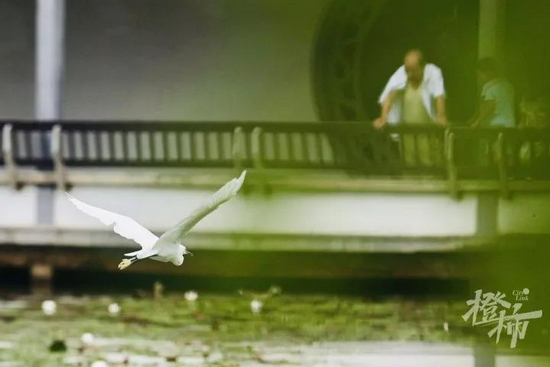 杭州未来七天降水将减少 接下来仍要当心午后雷阵雨
