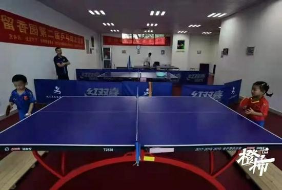 杭州5岁龙凤胎乒乓小将走红 两岁开始练球训练不间断