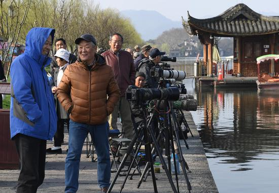 图为:多位摄影爱好者在西湖白堤聊天。王刚 摄