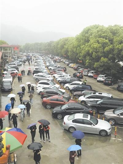 昨上午8时许,桃源陵园内已停满了车。
