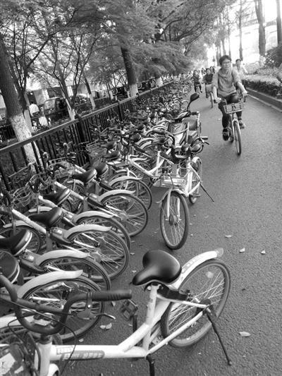 胡乱停放的共享单车 图片由读者毛大伯提供