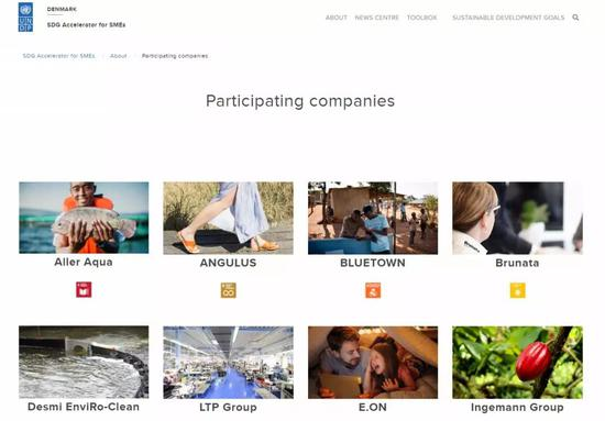 UNDP SDG Accelerator官网展示的正在实践的企业