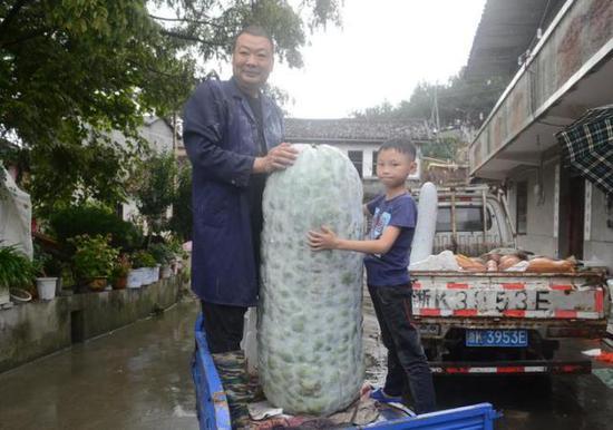192斤大冬瓜体长120厘米