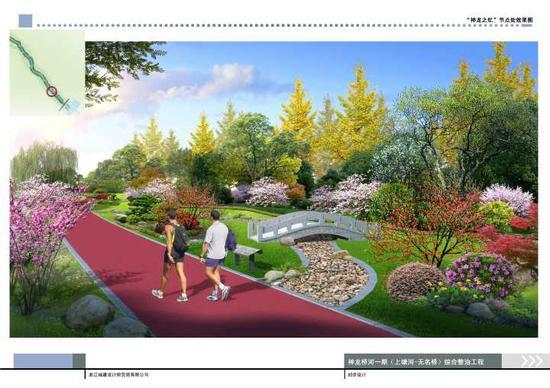 """为什么选择梅花作为神龙桥河沿河绿化的""""主打花""""?"""