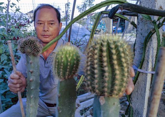 绍兴嵊州这个火龙果园能育出百变花卉 怎么做到的