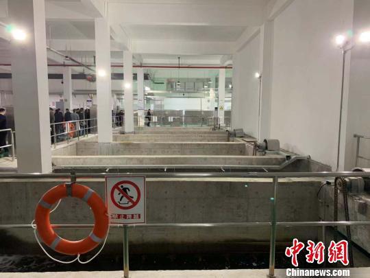 温州中心片污水处理厂。 郭其钰 摄