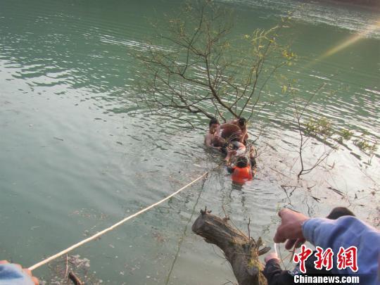 不慎掉入河中 徐晓鸽 摄