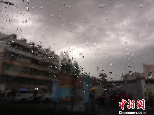 浙江多地开启阴雨模式。 张煜欢 摄