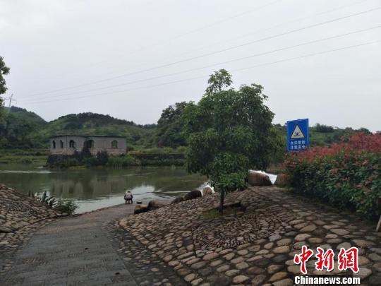 衢州一女子失足落水 热心父子合力营救(图)