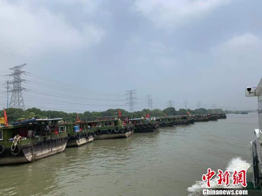 杭州内河水域停泊大量船只。 张斌 摄