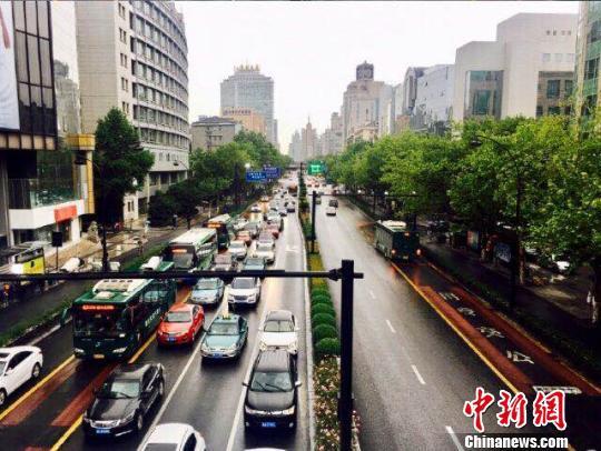 杭州某路段。 钱晨菲 摄