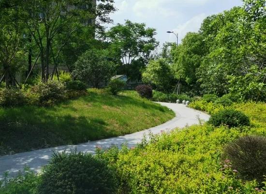 杭州今年将新建和提升改造一批小公园 已经有21个完工