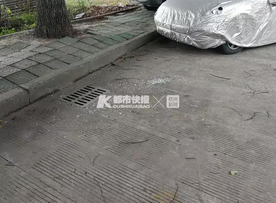 男子因手头拮据 在杭州一夜狂砸25辆车进行盗窃(图)