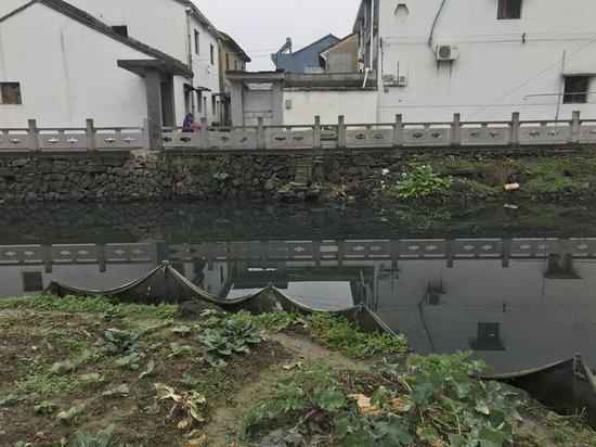 在洞桥镇鱼山头村牌楼附近,黑土污泥污染了河流。王晨辉 摄