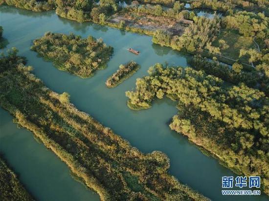 西溪湿地 新华社资料图