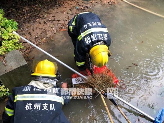 辖区各消防中队共出动4辆消防车,派出消防员30余人。