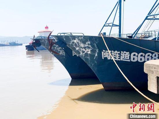 玉环市大麦屿鱼货码头,不少渔船已进港休渔。 吕琼雅 摄