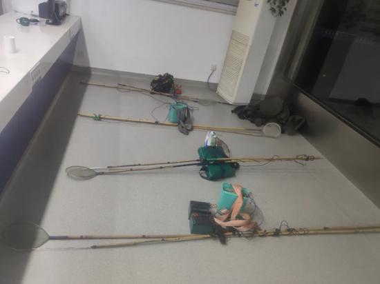 警方查获的野生鳗鱼苗和电捕工具