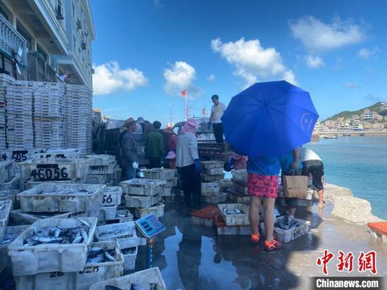 渔民在搬运海鲜 郑洁 摄