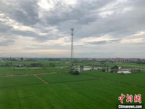 浙江国土空间生态修复:近三年新增耕地共8.55万亩