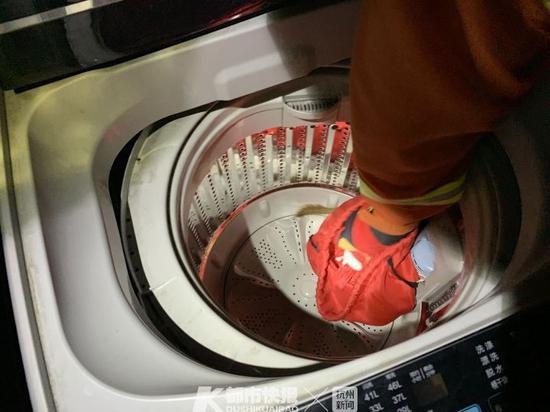 真的臭死了 浙江一小区20楼洗衣机钻进了一只黄鼠狼