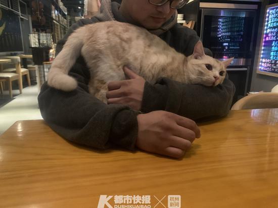 沈超和他的猫 摄影 | 楼金靖