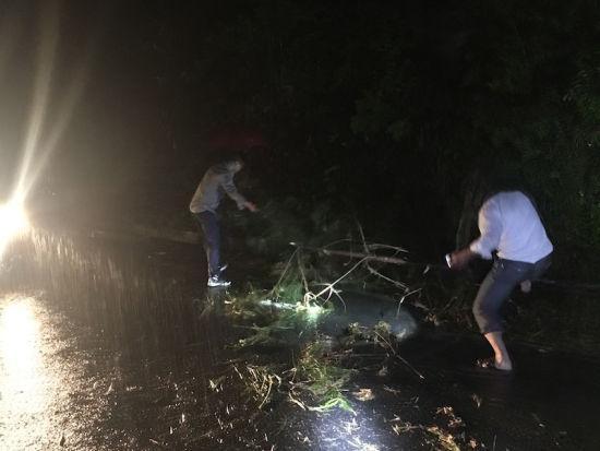 党员干部连夜冒雨清理倒塌的树木 婺城宣传部提供