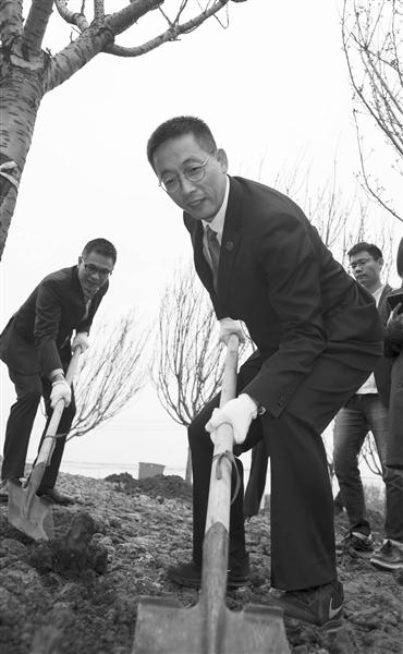 西湖大学校长施一公种植樱花