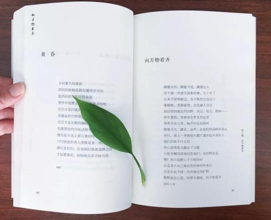 诗集《向万物看齐》辑录了126首诗 遂昌宣传部提供