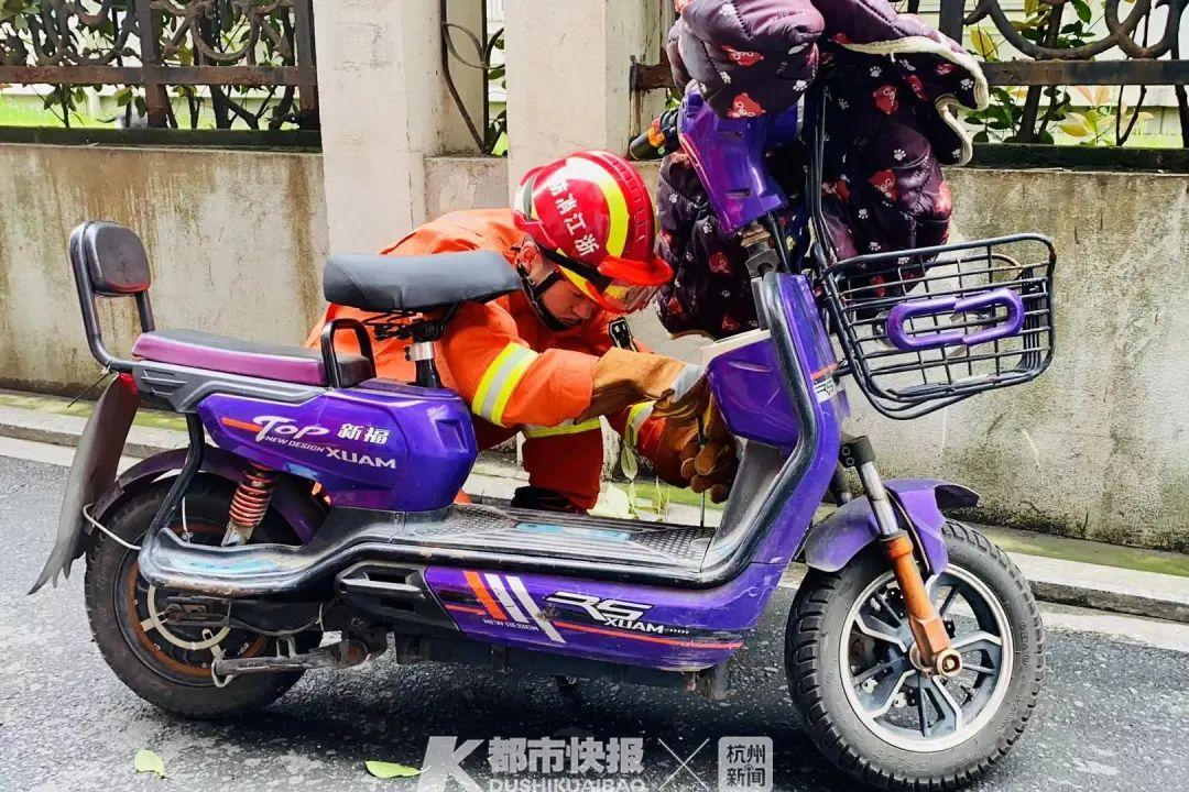 杭州一大姐惊慌拨打119求助 有蛇爬进电动车里了