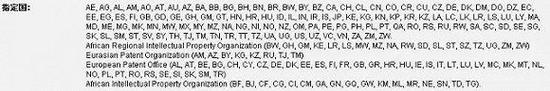WO国际专利申请(WO2016197943A1)指定国
