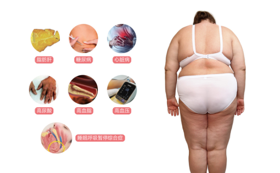 图 :七大肥胖并发症