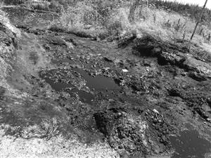 后海塘垃圾中转点的垃圾渗滤液令人担忧