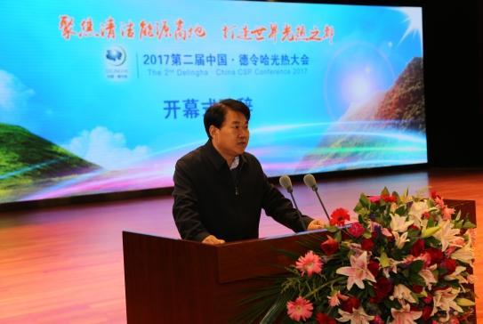 国家能源局新能源司和可再生能源司副司长李创军