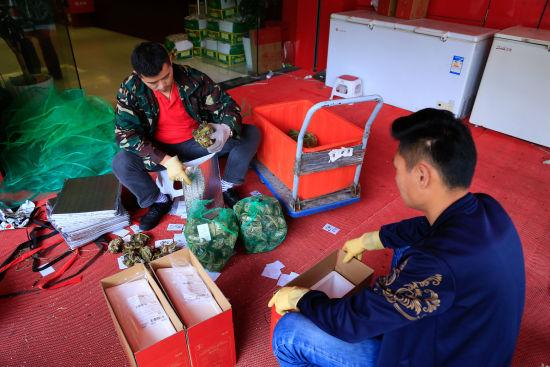 图为:店员正在将大闸蟹装进礼盒中。 王远 摄
