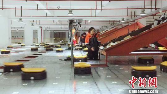 """""""小黄人""""智能分拣机器人在工作 义乌市邮管局提供"""