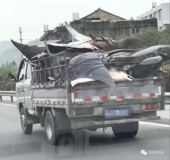 """图片来源 网友""""沿山河边""""微博"""